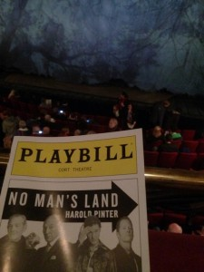 My seat for No Man's Land on Broadway.