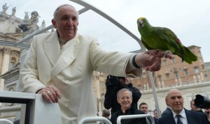 Vatican Pope Birds